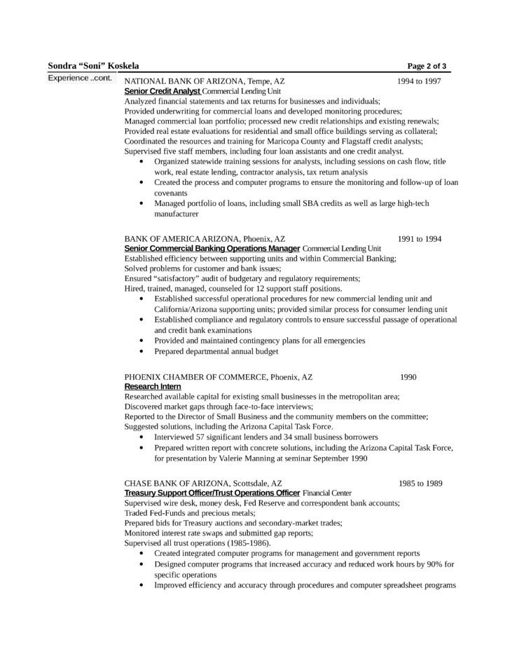 Chronological Loan Officer Resume Example Template | page 2
