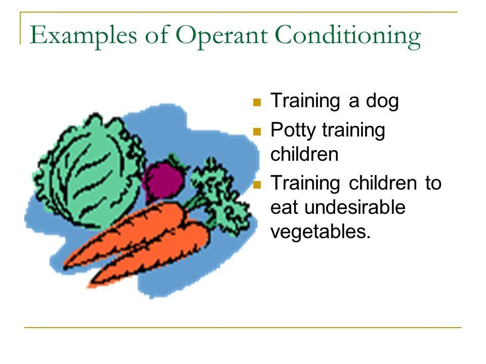 Operant Conditioning Also known as… instrumental conditioning ...