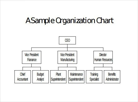 Sample Blank Organizational Chart - 8+ Documents in PDF