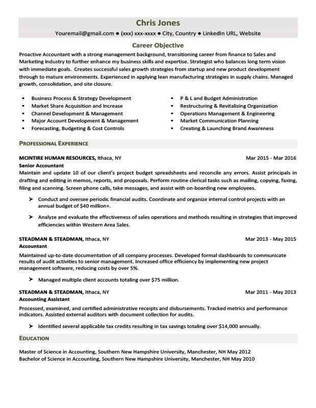Formal Resume Template. Programmer Cv Template 12 Free Creative ...