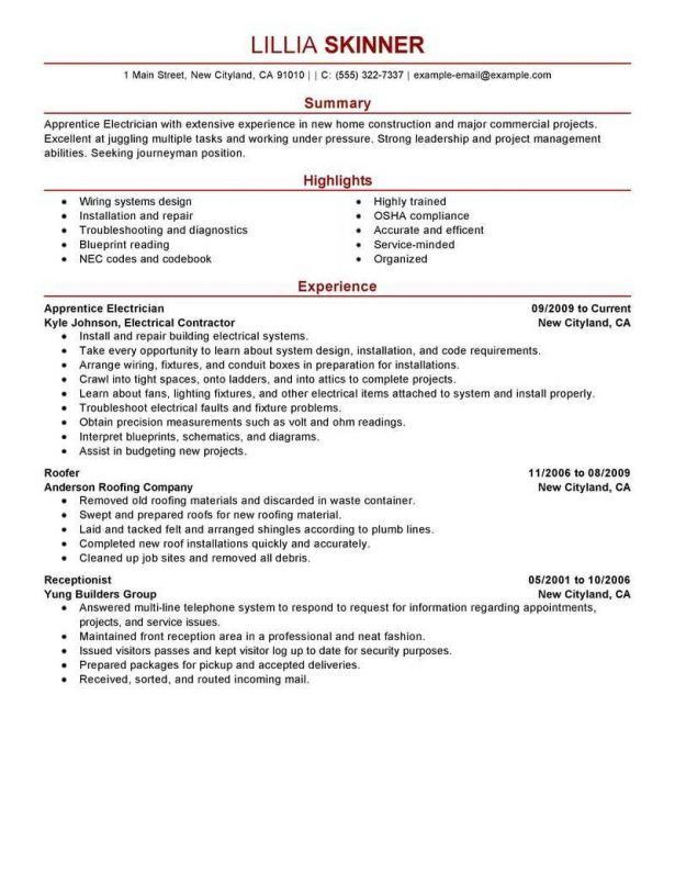 Resume : Fashion Resume Objective Professional Profile Test ...