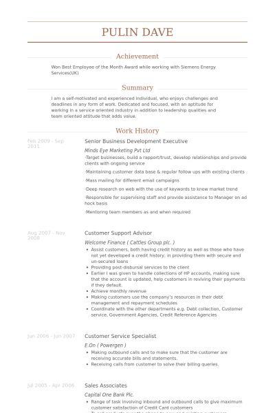 Senior Business Development Executive Resume samples - VisualCV ...