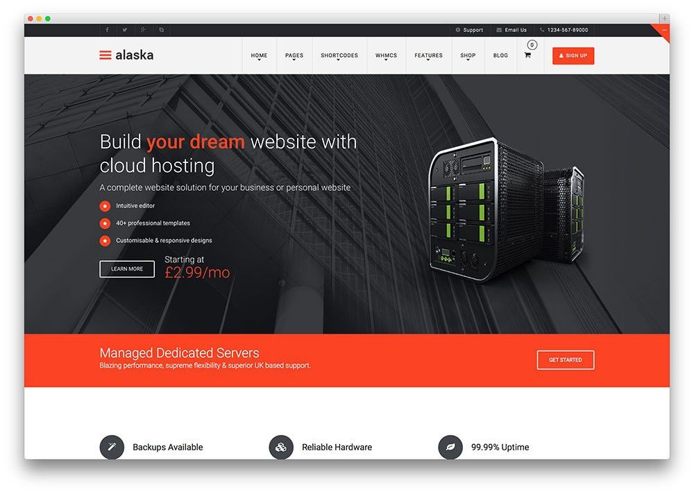 10+ Best Hosting WordPress Themes With WHMCS Integration 2017 ...