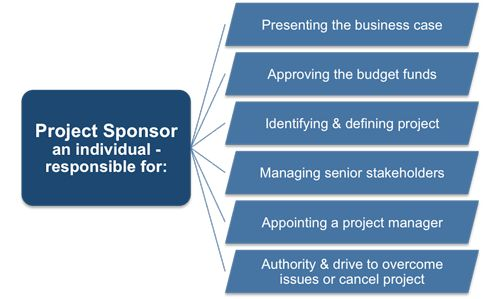 Project Sponsor Definition