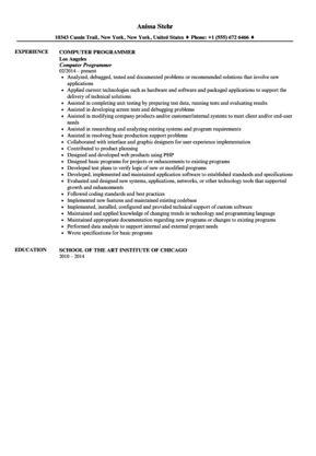 Computer Programmer Resume Sample | Velvet Jobs