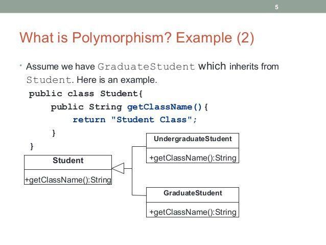 Java Programming - Polymorphism