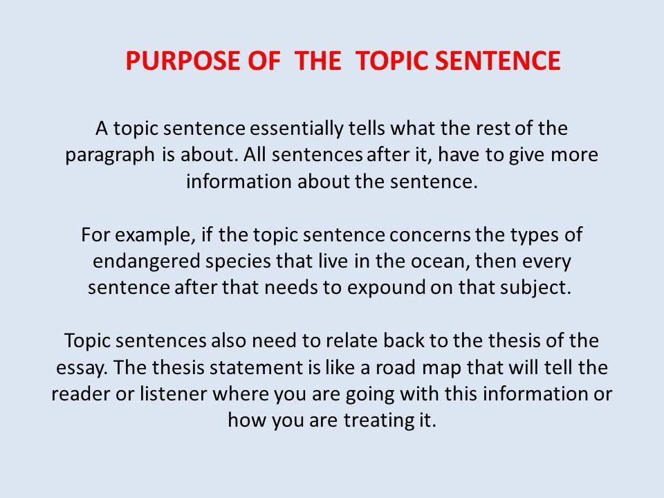 GRAMMAR: TOPIC SENTENCES SUPPORTING SENTENCES CONCLUDING SENTENCES ...