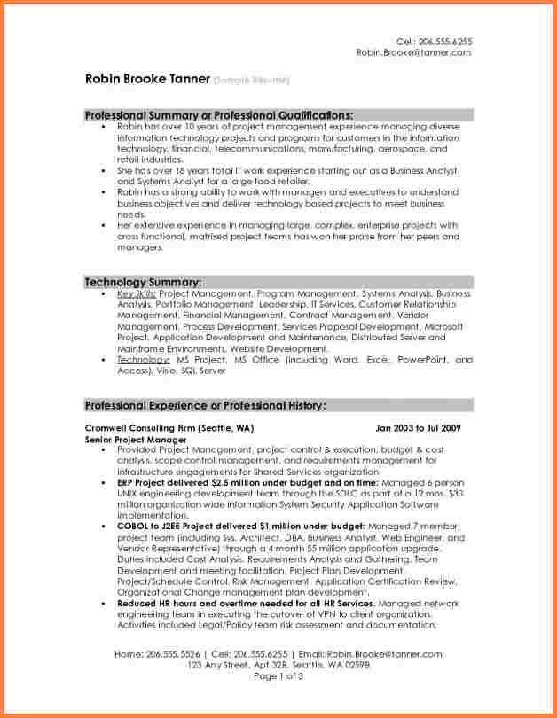 6+ example of professional summary for resume | Professional ...