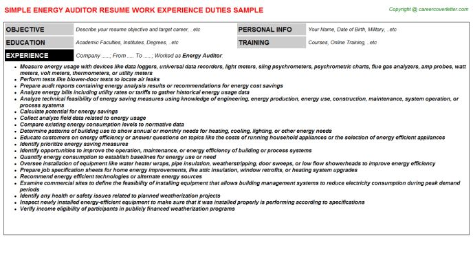 Energy Auditor Resume Sample