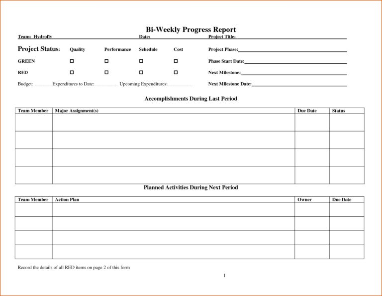 Weekly Reporting Template : vlashed
