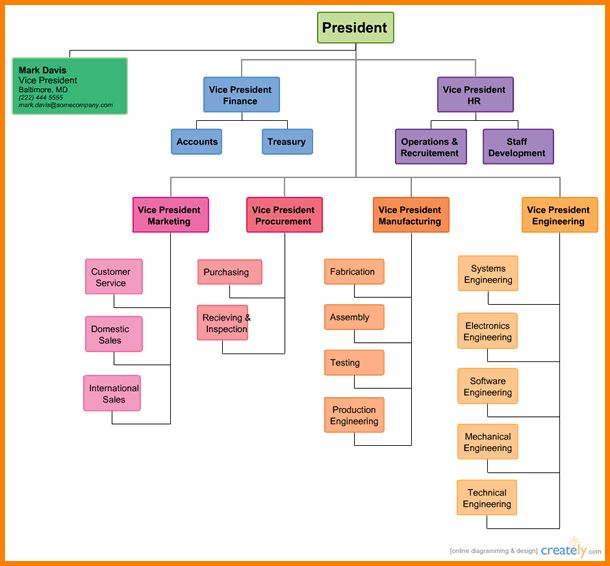 Free Org Chart Template.divisional Corporate Organizational ...