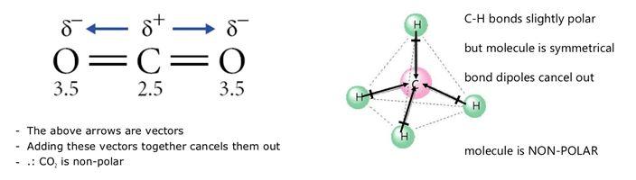 Polarity of a Molecule | Brilliant Math & Science Wiki