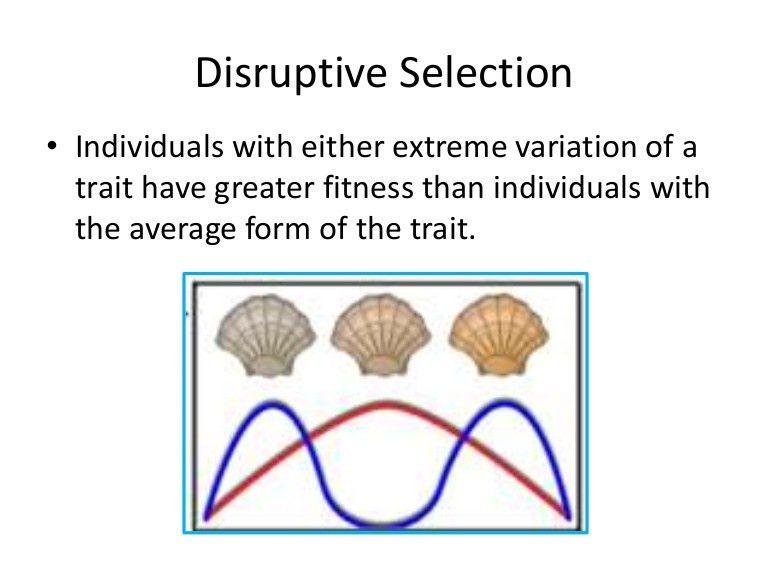 disruptiveselection-111206014957-phpapp02-thumbnail-4.jpg?cb=1323140924