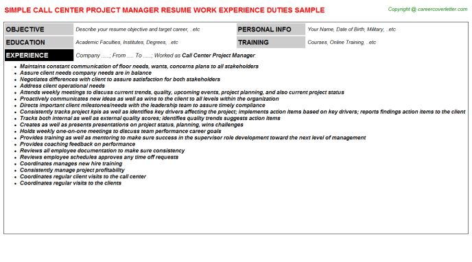 Call Center Project Manager Job Title Docs