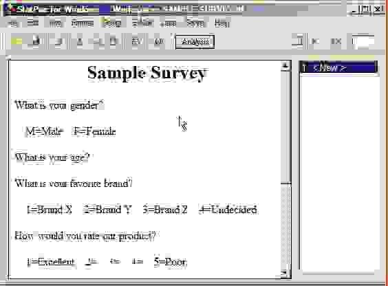 3+ how to make a survey in wordReport Template Document | report ...