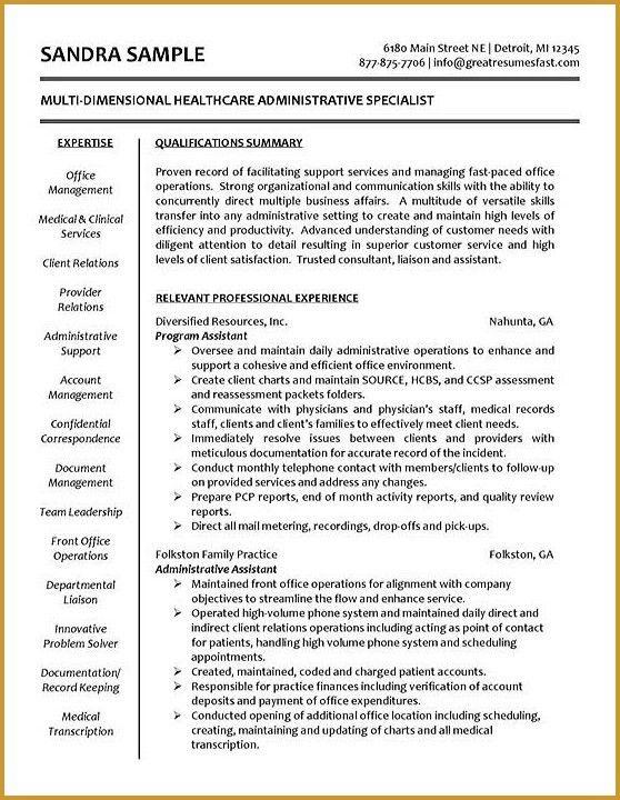 Resume Summary Statement Example. Sample Resume Summary Statements ...