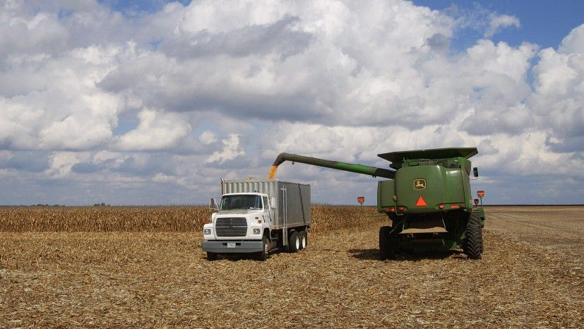 Crop Insurance: A Pricey 'Safety Net' For Farmers : The Salt : NPR