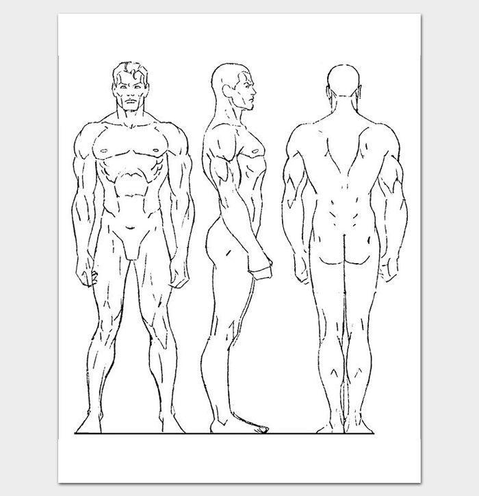 Male Human Body Outline Template | Outline Templates - Create a ...