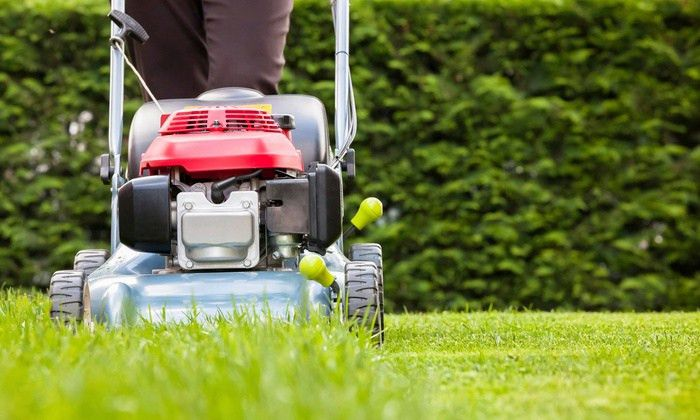 Lawn Mowing Service - Big Day Lawn and Cleaning | Groupon