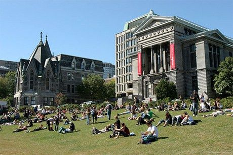 Beyond the red cup: On McGill's drinking culture   The McGill Tribune
