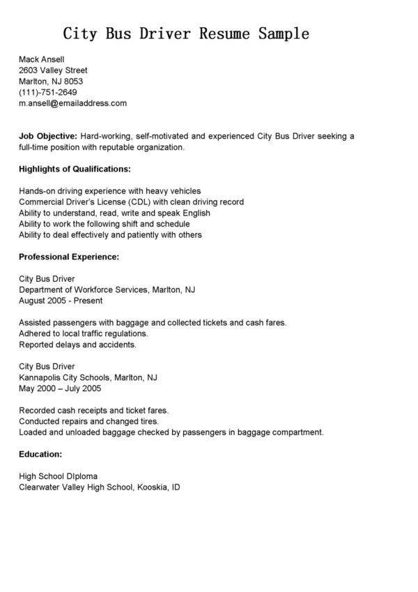 Sample Bus Driver Resume Sample and Job History : Expozzer