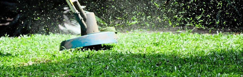 Clean Air Lawn Care Wilmington