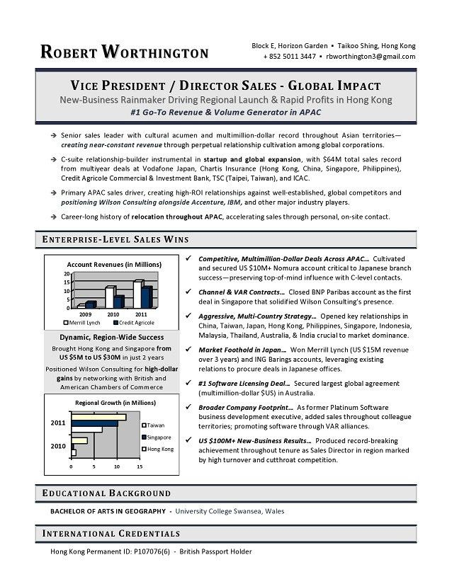 VP Sales Sample Resume - Executive resume writer VP, Director, CTO ...