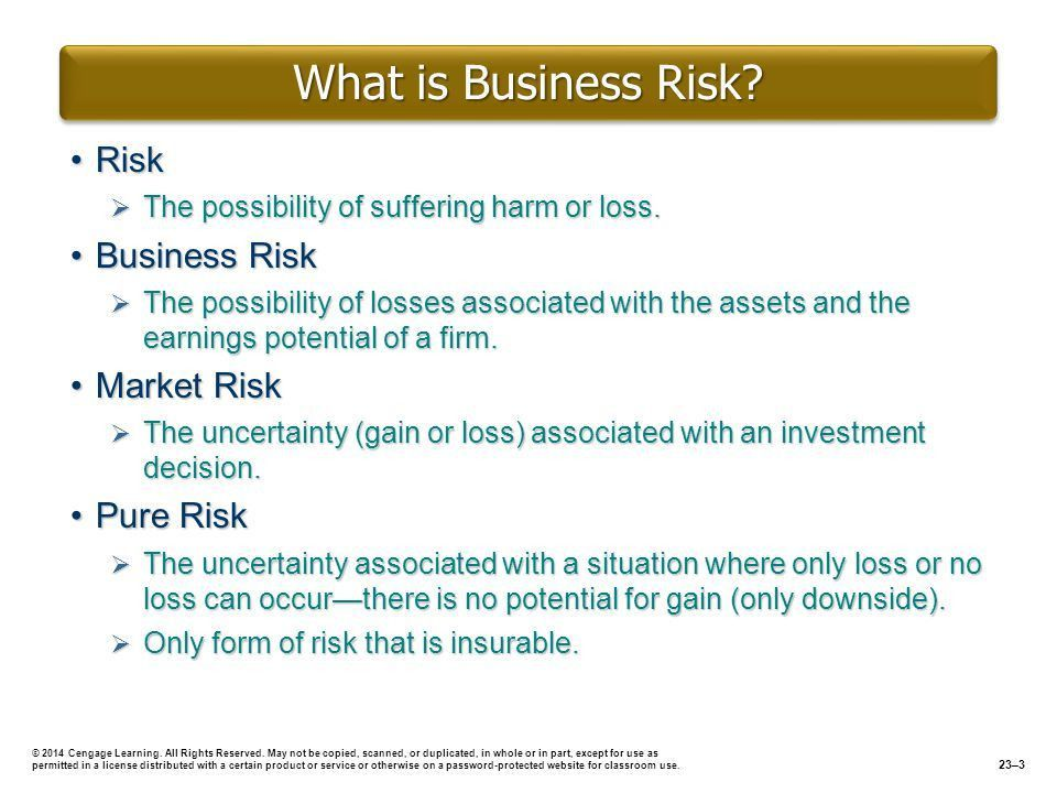 Define business risk, and explain its two dimensions. - ppt video ...