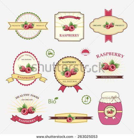 Vintage Organic Label Set Template Stock Vector 104360069 ...