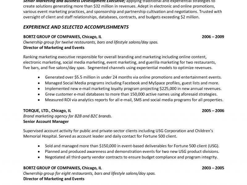 Download Executive Summary Resume Example | haadyaooverbayresort.com