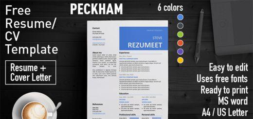 Free Clean Resume Templates | Rezumeet.com