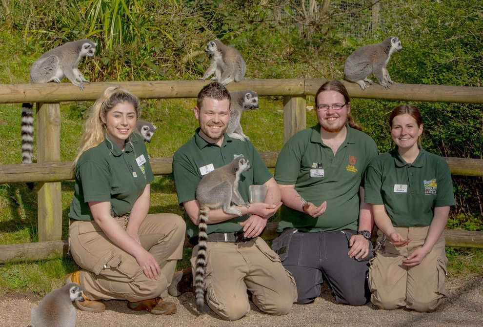 Animal magic as four join up for training at Dudley Zoo | Express ...