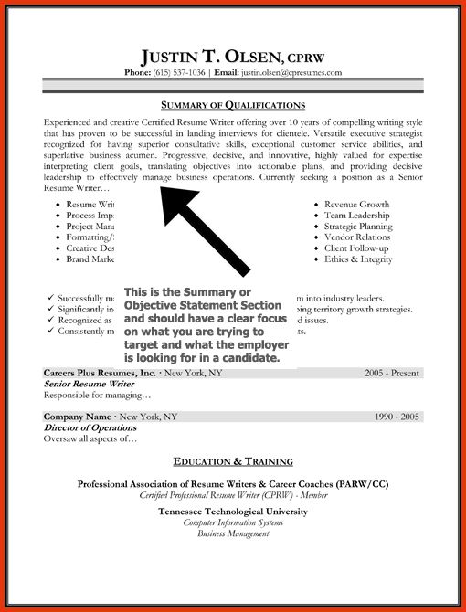 objectives professional resumes