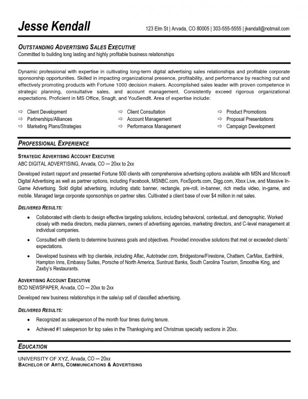 sample resume for account executive sales account manager resume