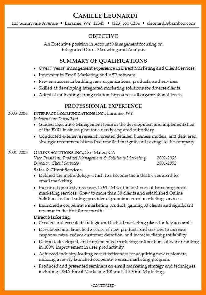 Examples Of Professional Summary For Resume. Resume Summary ...