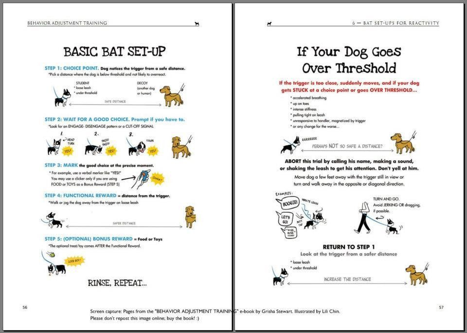Classical Conditioning (notes from Clicker Expo) | Boogie's blog