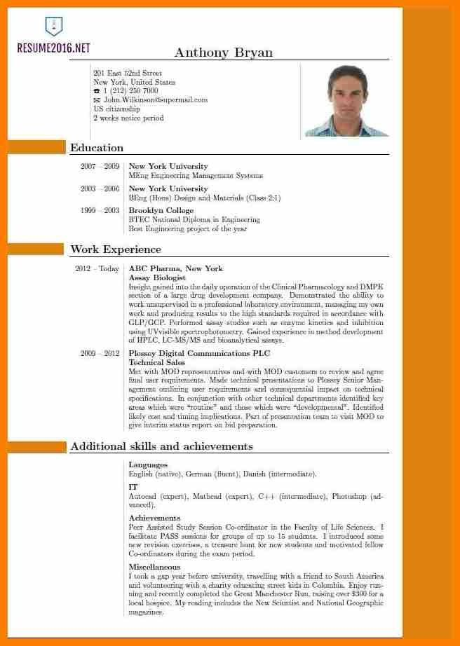 10+ latest cv format 2017 india | sephora resume