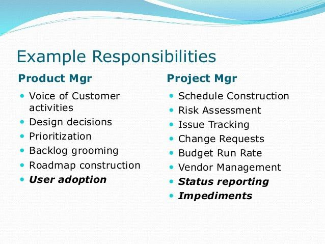 Product Manager vs Project Manager - Defining the Roles (June 18, 201…