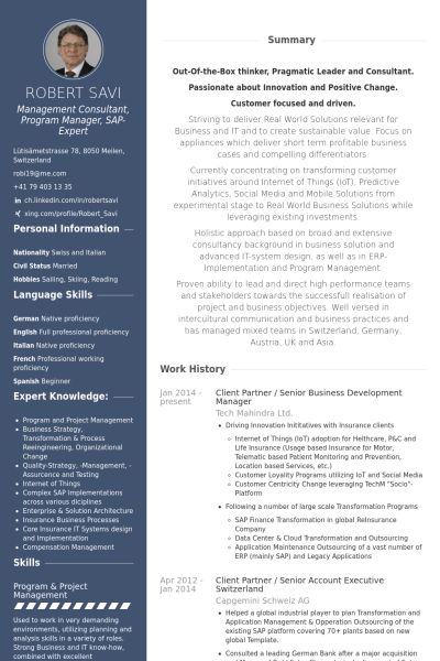 Partner Resume samples - VisualCV resume samples database