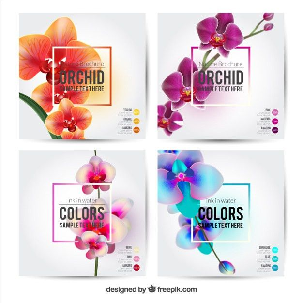 Flower brochures template Vector | Free Download