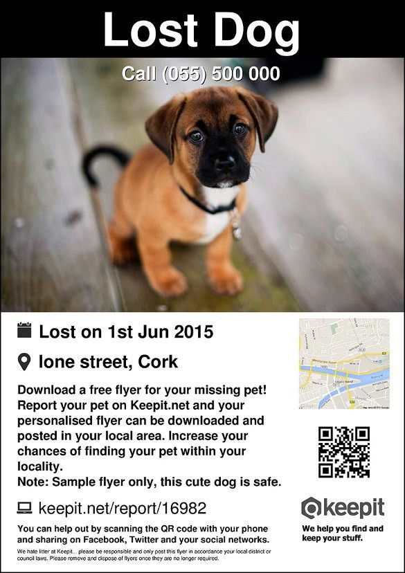 Lost Pet Flyer Maker, best lost pet flyer template free gallery ...