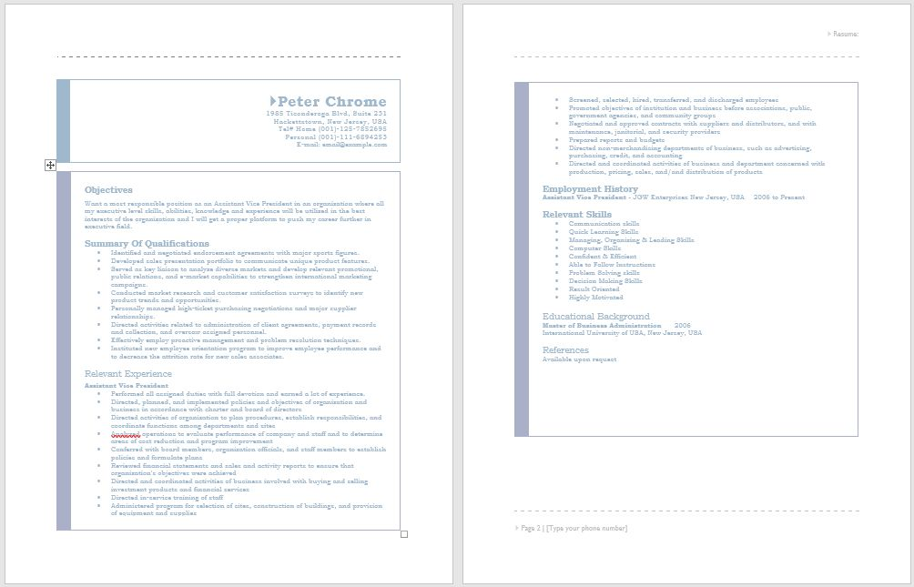 Assistant Vice President Resume – Sample Resumes