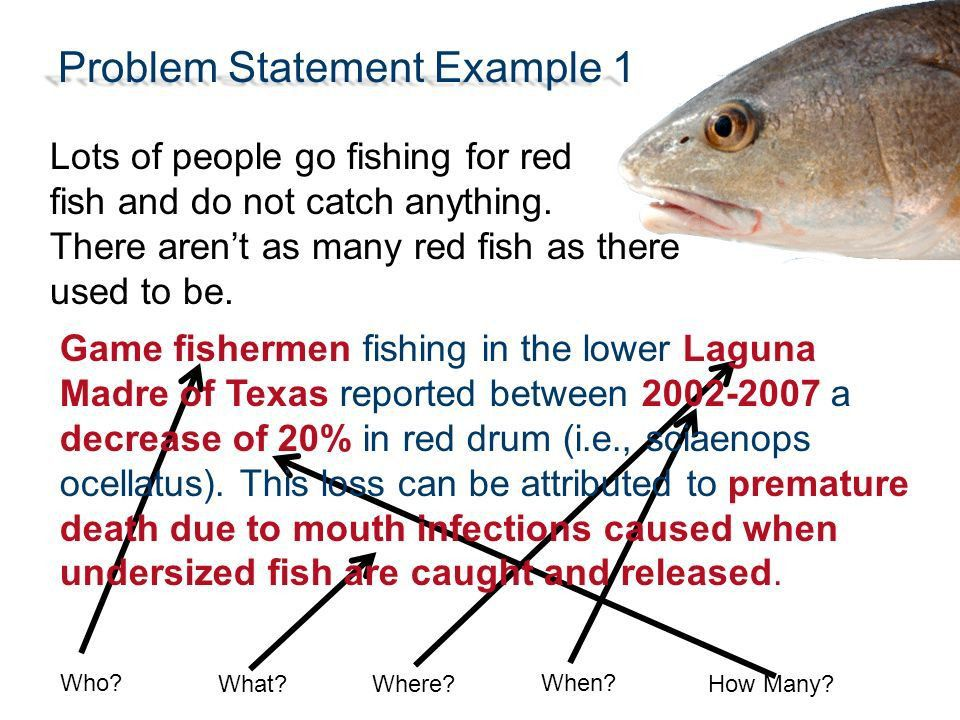 Writing a Problem Statement - ppt video online download