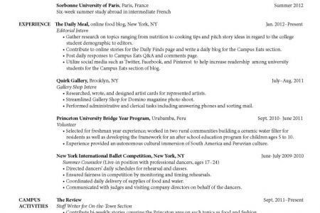 resume examples volunteer work resume impressive sample of ...