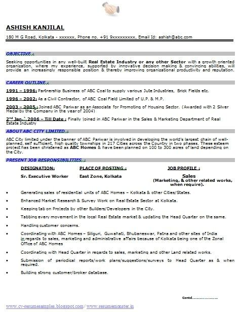 Telecommunications Executive Resume Sample Regarding 23 ...