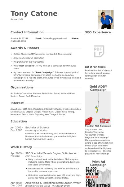 Seo Resume samples - VisualCV resume samples database