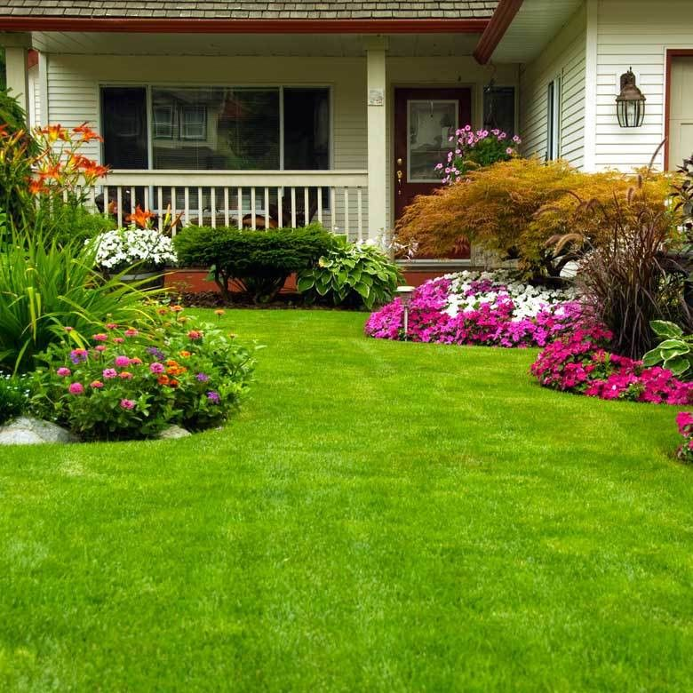 Lang's Lawn Care, tree care, and outdoor pest control of southeast PA