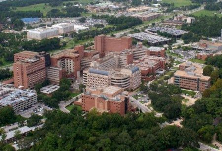 Division of Neonatology » College of Medicine » University of Florida