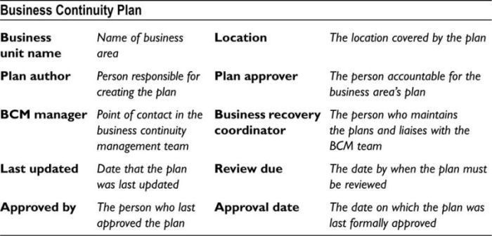 APPENDIX H: Basic Business Continuity Plan Template - Disaster ...