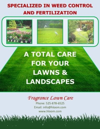 15 Lawn Care Flyers [Free Examples + Advertising Ideas]